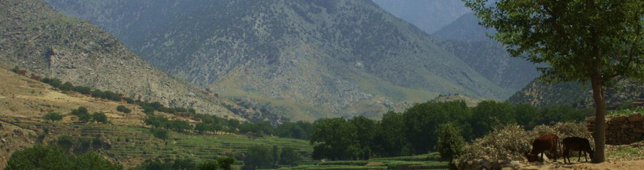 Afghancentrism